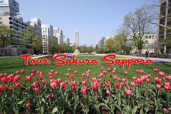 banner tour jepang sakura sapporo hokaido