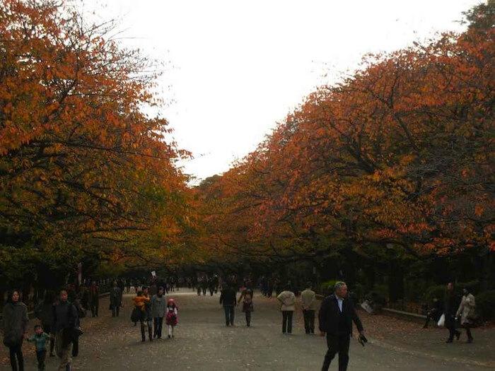 musim gugur di taman ueno tokyo