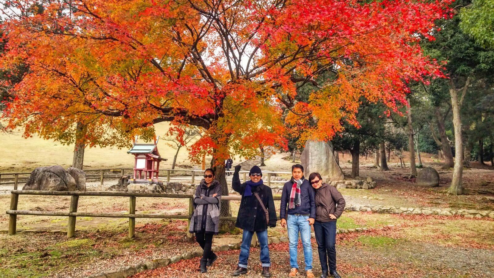 tour jepang romantic autumn november 2015