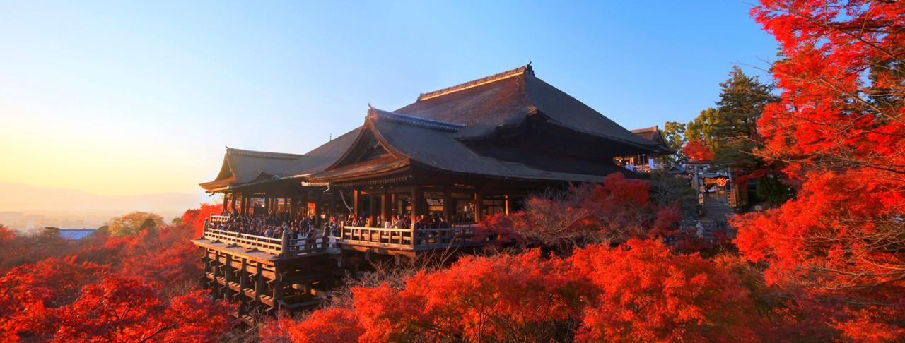 Paket Tour ke Kyoto selama 1 Hari / Day dengan Sewa Mobil