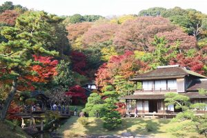 "Paket Tour Sewa Mobil di Jepang 1 Hari "" Yokohama Area """