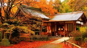 Lokasi Menarik Menghabiskan Musim Gugur di Kyoto Jepang
