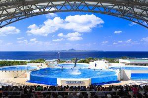 Pesona Keindahan Alam Laut di Akuarium Terbesar Jepang