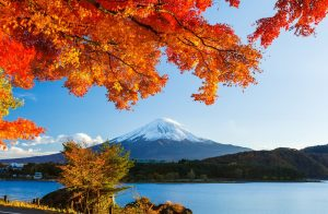 Open Trip Paket Tour Jepang Autumn 28 November – 3 Desember 2018
