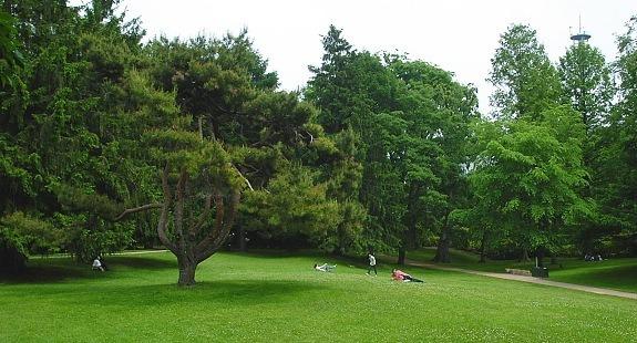 Botanical Garden Sapporo Hokkaido Jepang
