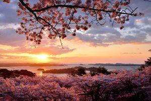 7 Tempat wisata di Aomori Ini Akan Memanjakan Hati Dan Matamu