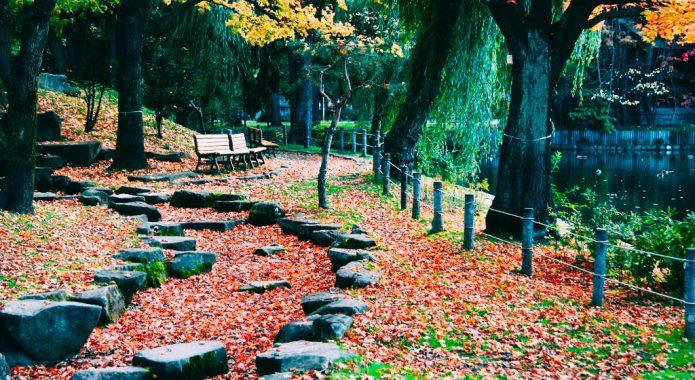 Tokiwa Park Asahikawa Hokkaido Jepang 2