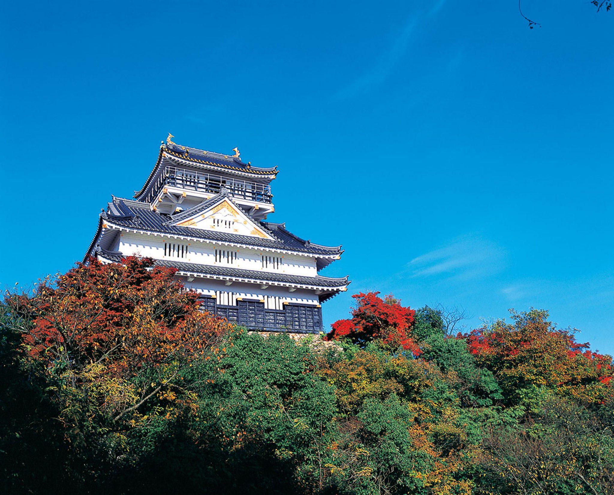 Kastil Gifu