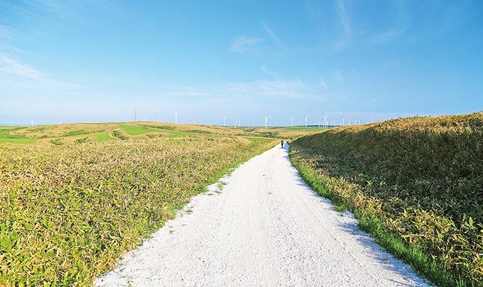 Soya Hill Jalan Kerang Putih Wakkanai Hokkaido Jepang 2
