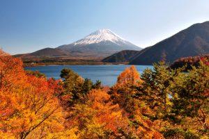 Rangkaian Acara Pada Musim Gugur di Jepang dan Festival Momiji Kawaguchiko