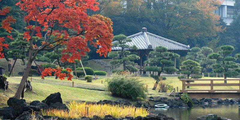 Kyu_Shiba_Rikyu by www.jalan2kejepang.com