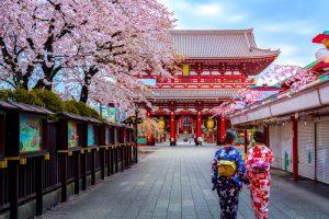 Taman di Jepang Terbaik Untuk Melihat Keindahan Bunga Sakura