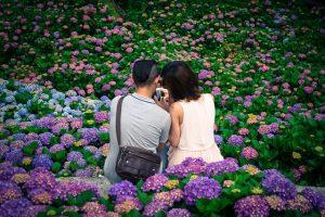 5 Tempat Favorit Menikmati Bunga Musim Panas di Tokyo