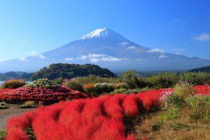10 Tempat Wisata Sekitar Danau Kawaguchi Dekat Gunung Fuji