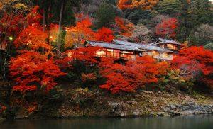 Rekomendasi Hotel Mewah Hoshinoya Resort di Jepang